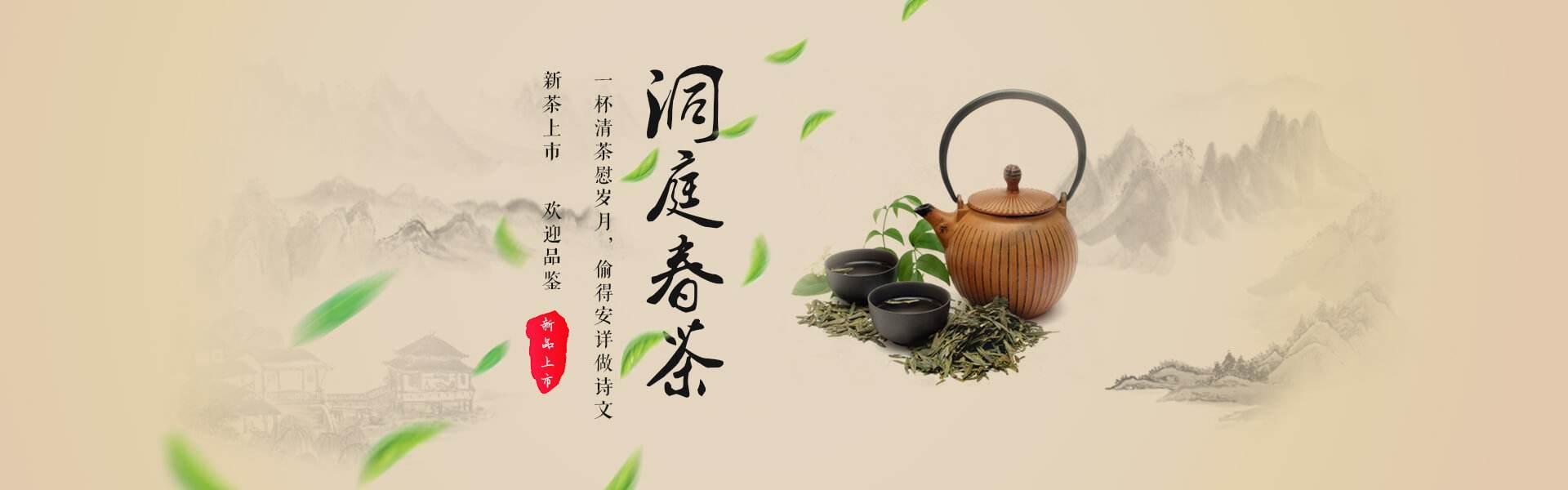 """四川旺苍""""四力""""助茶产业向优势产业健康发展"""
